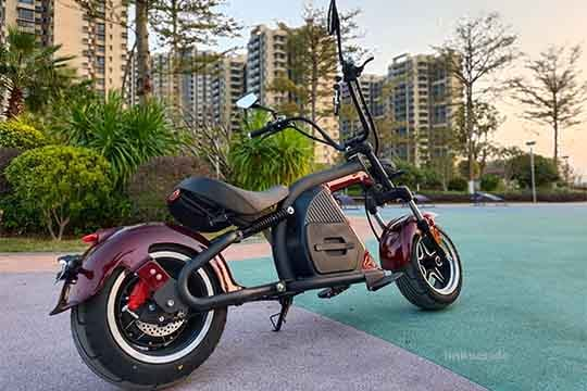 Citycoco Harley chopper scooter