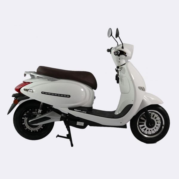 Adult Electric Moped