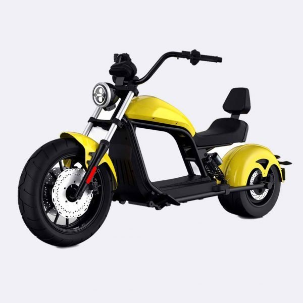 Fat Wheels Electric Scooter