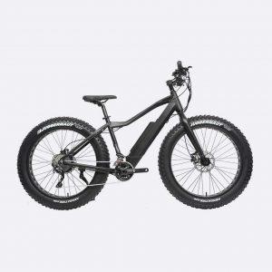 Electric Bike Fat Wheels