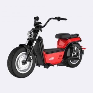 Fat Tire Electric Motorcycle