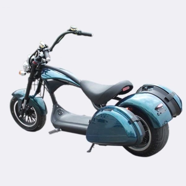 Citycoco Scooter with saddle bags